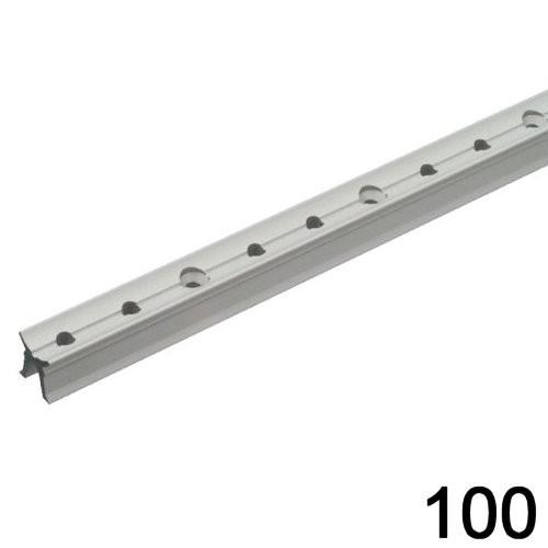 Pfeiffer Traveller Schiene 19mm / 100